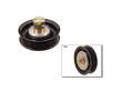 10/95 - 12/99 Nissan Pathfinder 3.3 2WD VG33E  Acc. Belt Tension Pulley border=