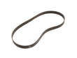Genuine Accessory Drive Belt