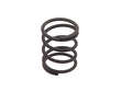 Genuine Manual Trans Mount Spring (OES1618325)