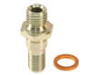 Bosch Fuel Pump Check Valve (BOS1625651)