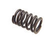 Original Equipment Engine Valve Spring (OEA1635973)