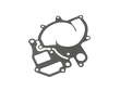 Victor Reinz Engine Water Pump Gasket (REI1639553)
