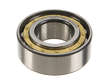Genuine Manual Trans Main Shaft Bearing (OES1645681)