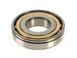 FAG Differential Pinion Bearing (FAG1646259)