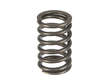 Genuine Engine Valve Spring (OES1735781)