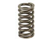 Genuine Engine Valve Spring (OES1736031)