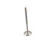 Genuine Engine Intake Valve (OES1736355)