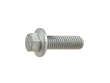 Genuine Engine Timing Belt Roller Bolt (OES1810656)