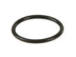 Genuine Auto Trans Filter O-Ring (OES1818389)