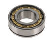 Genuine Differential Pinion Bearing (OES1843249)