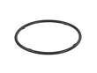 Genuine Differential Oil Cooler Seal (OES1845894)