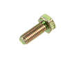Newco Engine Water Pump Flange Bolt