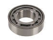 Genuine Differential Pinion Bearing (OES1889135)