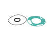 Genuine Engine Oil Pump Gasket Kit (OES1904294)