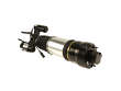 Arnott Suspension Strut Assembly